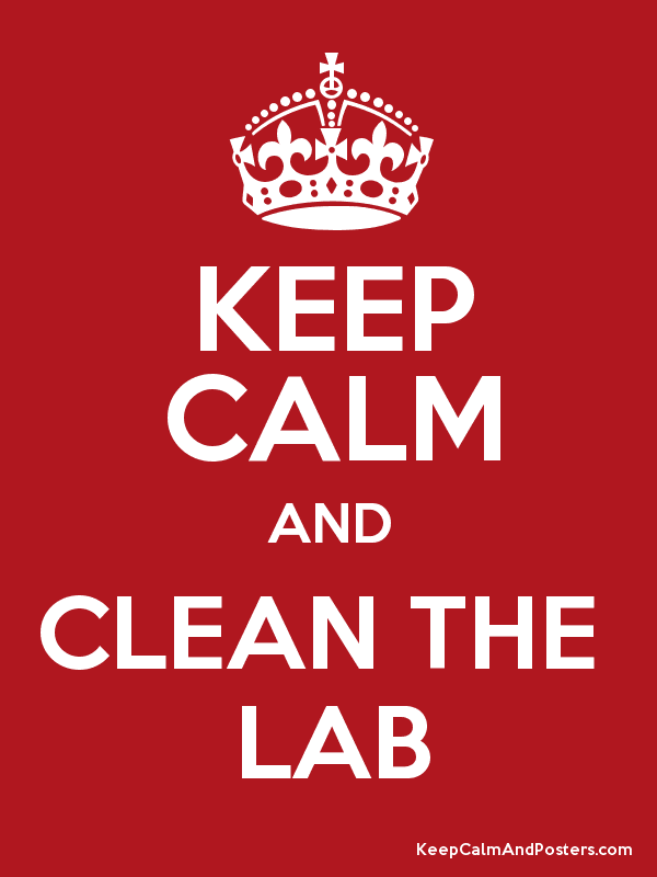 how to clean a lab