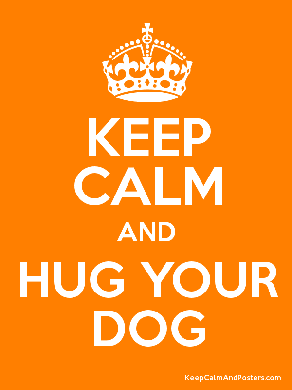 KEEP CALM AND HUG YOUR DOG Poster