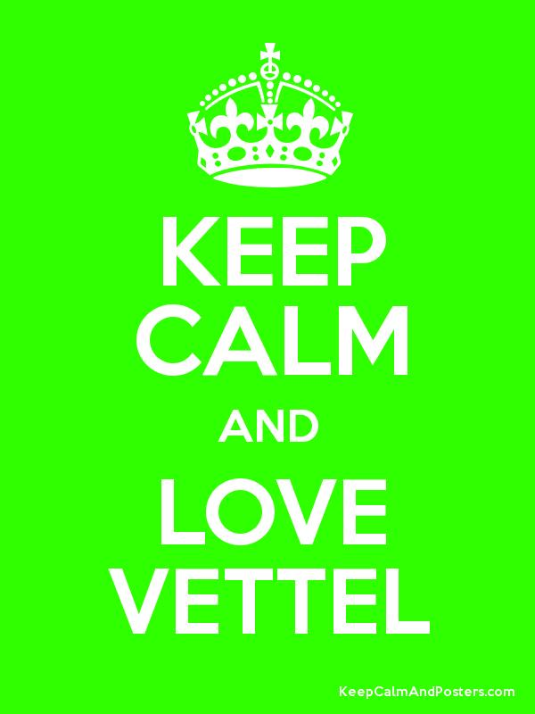 KEEP CALM AND LOVE VETTEL Poster