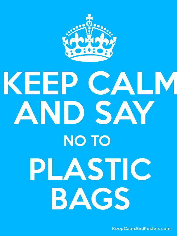 say no to plastic bags summary Say 'no' to plastic bags by pritam khatri chat_bubble_outline 0 the thinner bags are a major threat to the environment and are non-disposable hence governments of indian and bangladesh have banned plastic bags of below 50 microns.