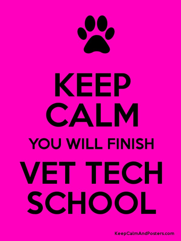 KEEP CALM YOU WILL FINISH VET TECH SCHOOL - Keep Calm and Posters ...