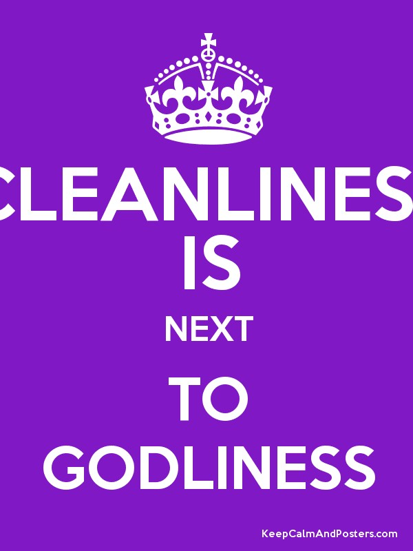 essay for cleanliness is next to godliness