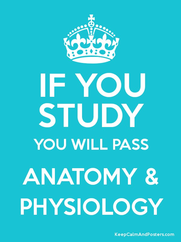 IF YOU STUDY YOU WILL PASS ANATOMY & PHYSIOLOGY - Keep Calm and ...