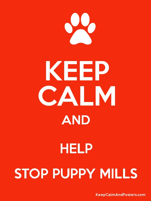 KEEP CALM AND HELP STOP PUPPY MILLS - Keep Calm and Posters