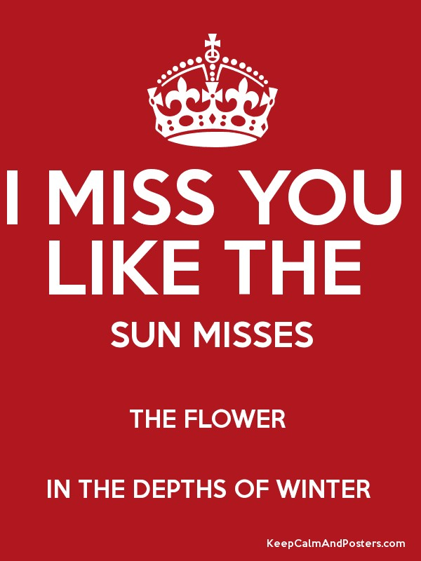 i miss you like the sun misses the flower in the depths of winter poster