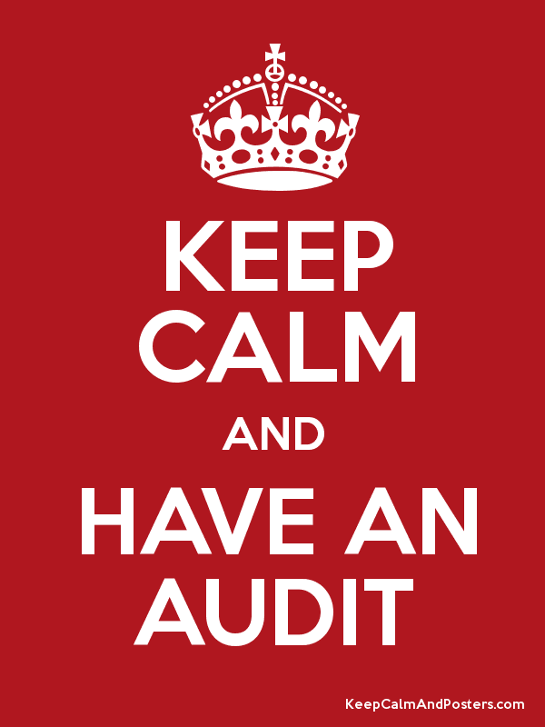 KEEP CALM AND HAVE AN AUDIT Poster