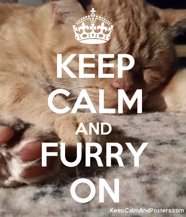 KEEP CALM AND FURRY ON - Keep Calm and Posters Generator