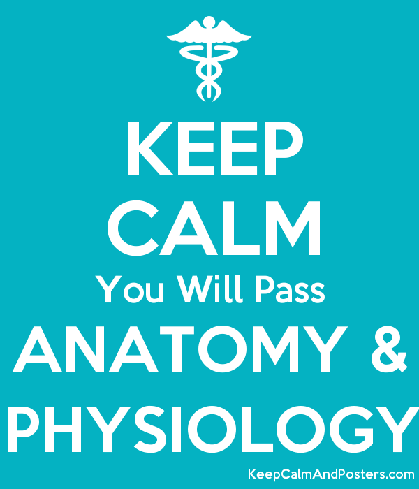 KEEP CALM You Will Pass ANATOMY & PHYSIOLOGY - Keep Calm and Posters ...