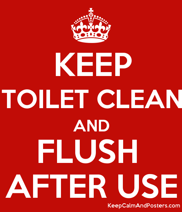 Flush Toilet After Use