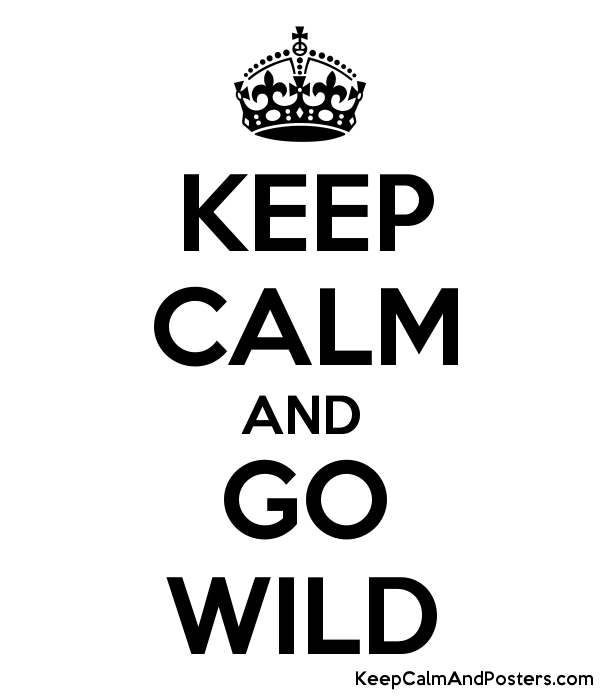 KEEP CALM AND GO WILD Poster