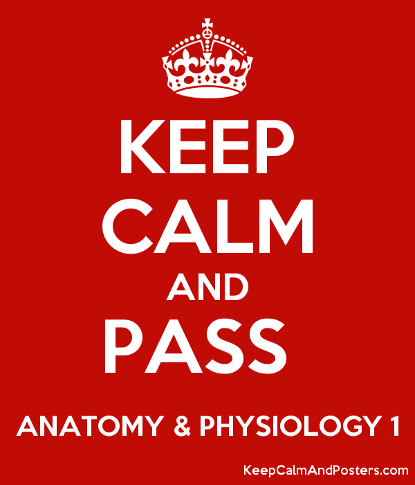 KEEP CALM AND PASS ANATOMY & PHYSIOLOGY 1 - Keep Calm and Posters ...
