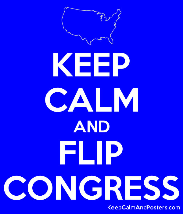 KEEP CALM AND FLIP CONGRESS Poster