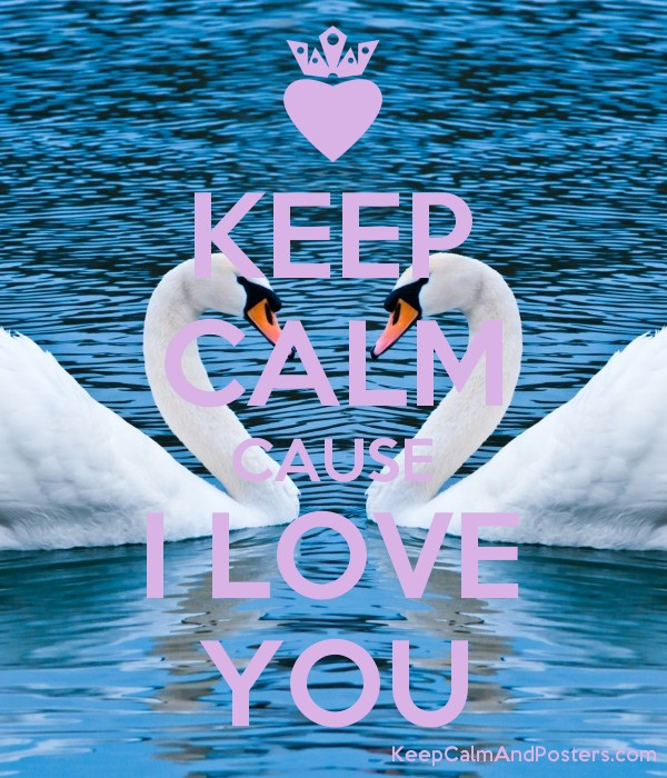 KEEP CALM CAUSE I LOVE YOU Poster