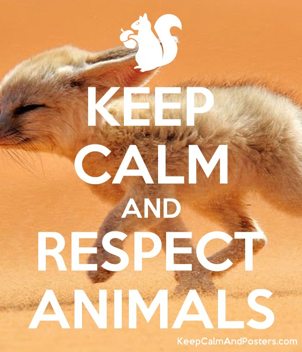 KEEP CALM AND RESPECT ANIMALS - Keep Calm and Posters