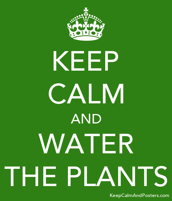 KEEP CALM AND WATER THE PLANTS Poster