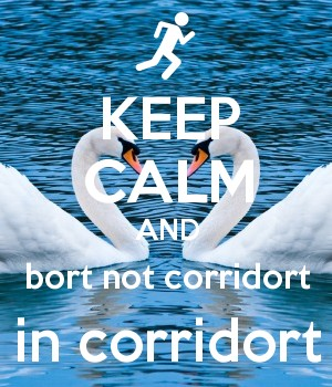 KEEP CALM AND bort not corridort in corridort