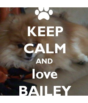 KEEP CALM AND love BAILEY
