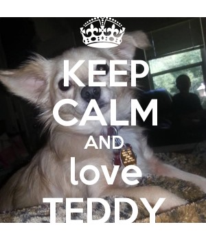 KEEP CALM AND love TEDDY