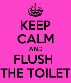 KEEP CALM AND FLUSH  THE TOILET