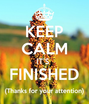 KEEP CALM IT'S  FINISHED (Thanks for your attention)