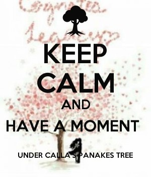 KEEP CALM AND HAVE A MOMENT  UNDER CALLA'S PANAKES TREE