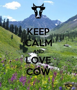 KEEP CALM AND LOVE COW