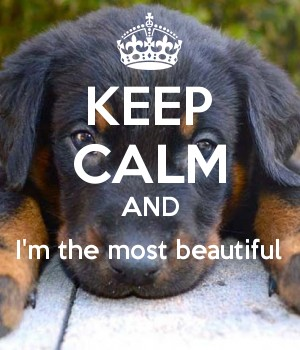 KEEP CALM AND I'm the most beautiful