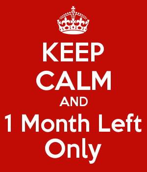 KEEP CALM AND 1 Month Left Only