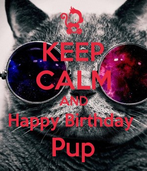 KEEP CALM AND Happy Birthday  Pup