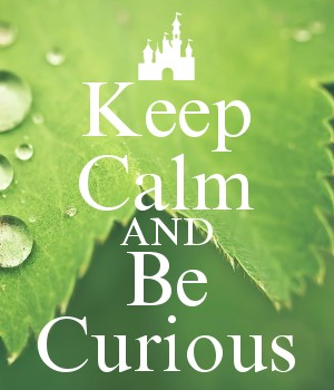Keep Calm AND Be Curious