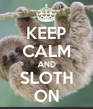 KEEP CALM AND SLOTH ON