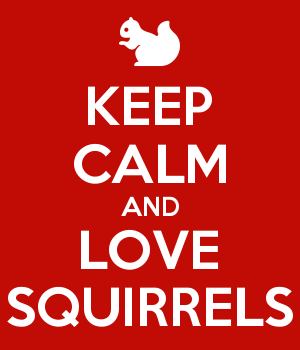 KEEP CALM AND LOVE SQUIRRELS